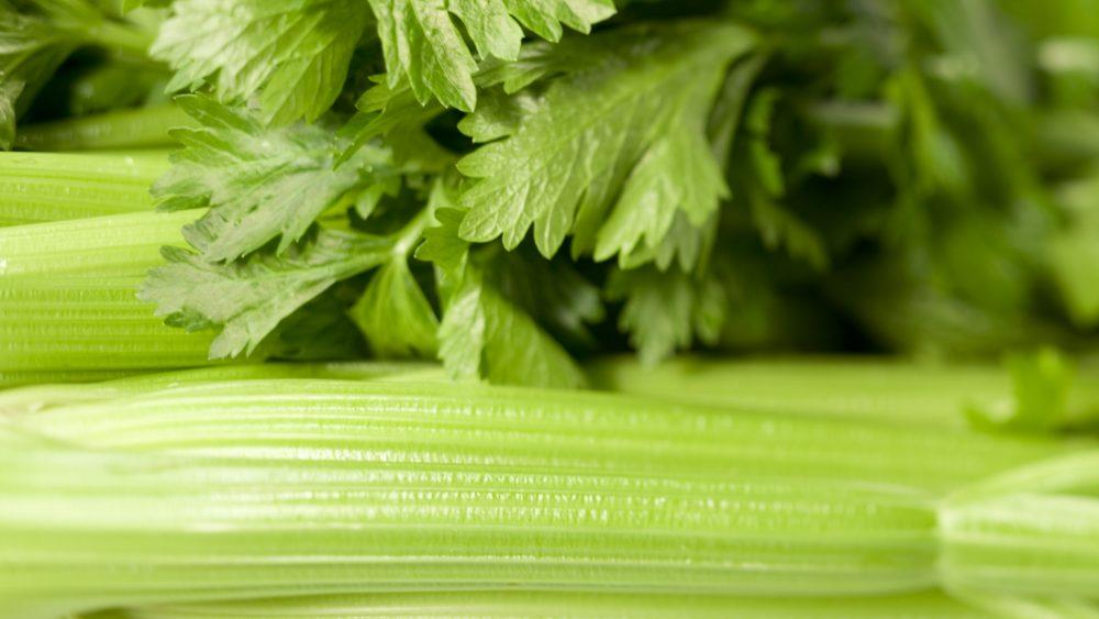 storing celery