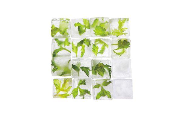 celery ice cubes